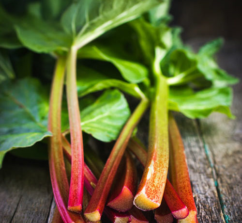 stalks of rhubarb on a table
