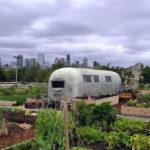 Garage Community Garden