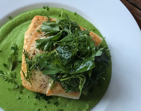 seared halibut with pea sauce