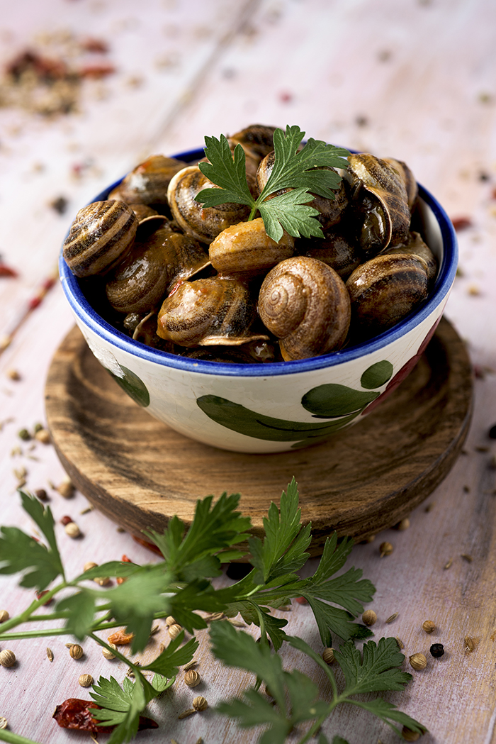 snails in a bowl