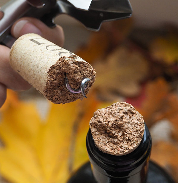 broken wine cork