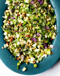 fennel cucumber chopped salad
