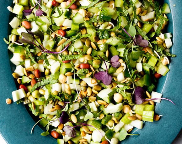 fennel cucumber chopped salad