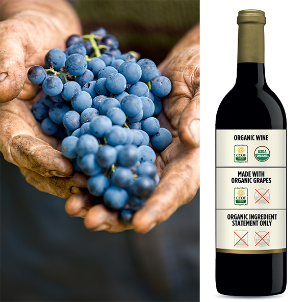 grapes with organic wine label