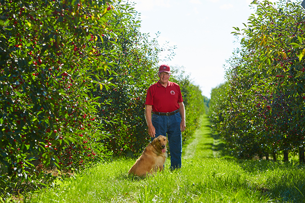 dale sequist with cherry trees