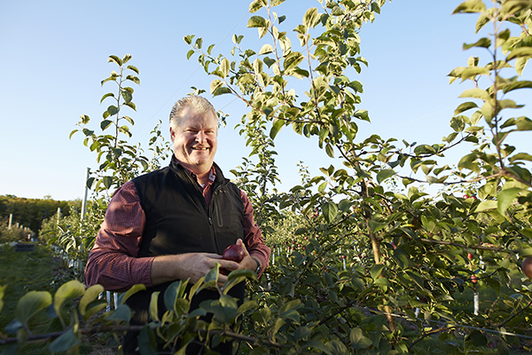 Jim Seaquist in apple orchard