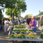 farmers market zucchini