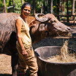 punita patel with water buffalo