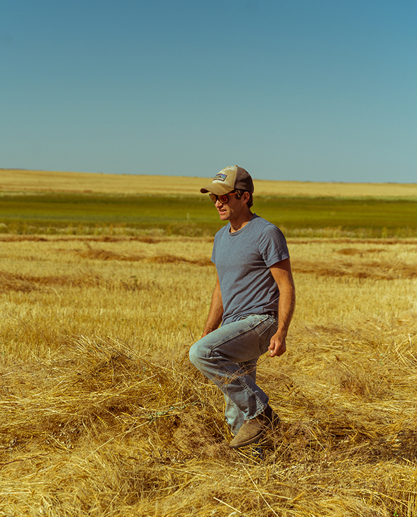 Casey Bailey in chickpea fields