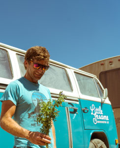 Casey Bailey with chickpea plant