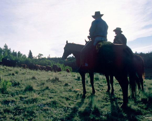 Mel Coleman at the ranch in Colorado