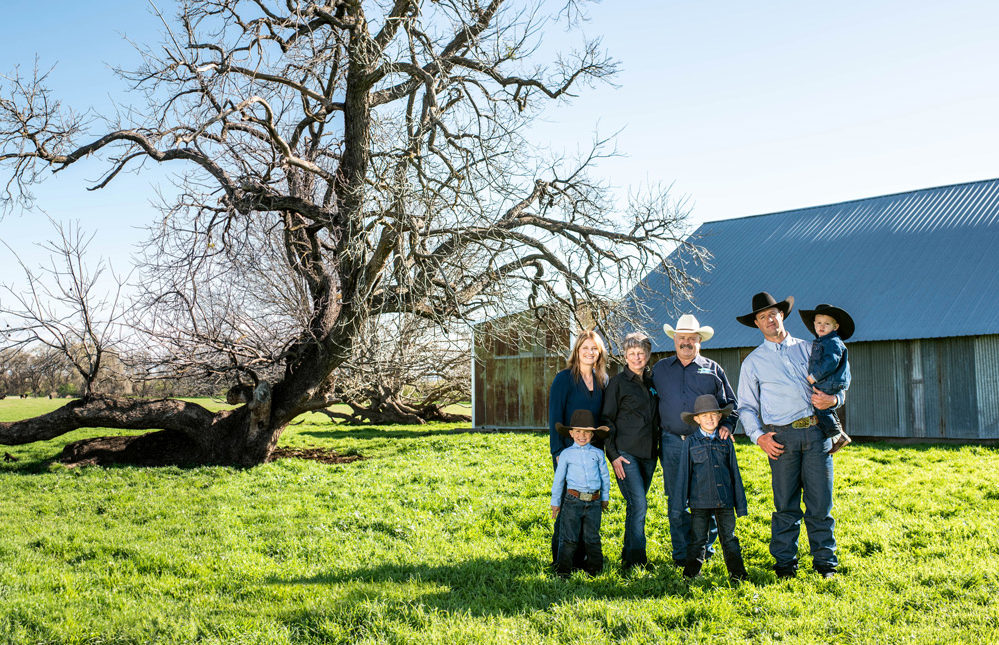 Family ranchers are at the root of Panorama Organic
