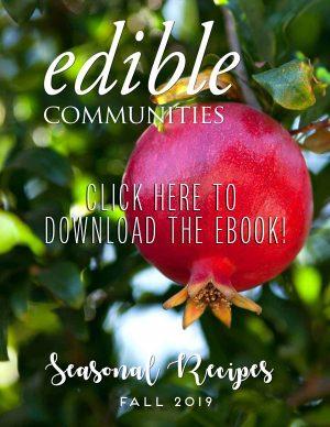 fall recipe ebook download